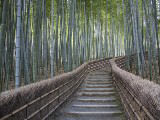 Brent Winebrenner Stairway Through Bamboo Grove..