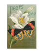 Plant Flower Poster Lily - Pear's Soap Advertising Art Print